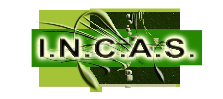 logo incas cinema